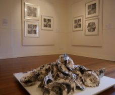 Black, White and Shades of Grey Ink on Paper Installation Unique State Silkscreen Prints 2016 (Bundoora Homestead - Mess Gallery)
