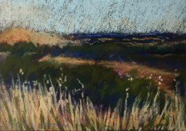 Evening, Creswick 1997 16 X 23cm Pastel