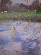 Geese catching the sun Montsalvat