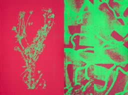 Interplay Pink & Green (pair) silkscreen printing on 300gsm 56 x 76cm print paper
